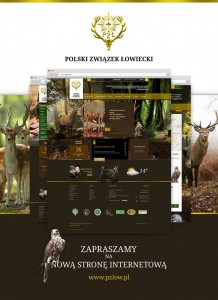 pzlow.pl