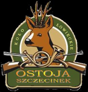 Logo 1 OSTOJA