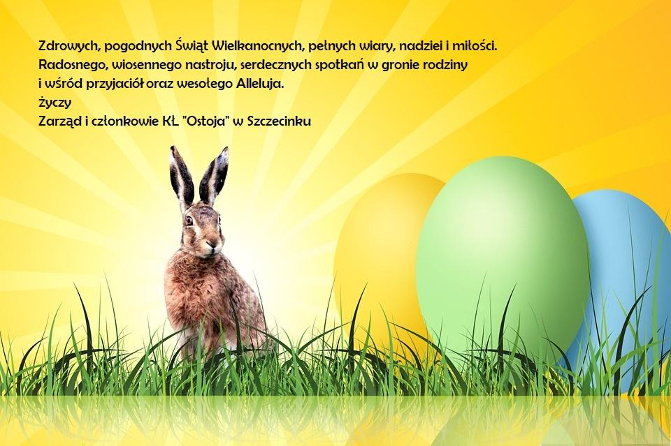 egg-256025_960_720